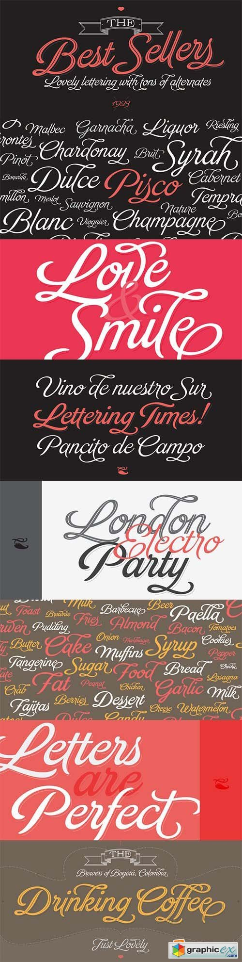 Brand Font Family - 11 Fonts $278