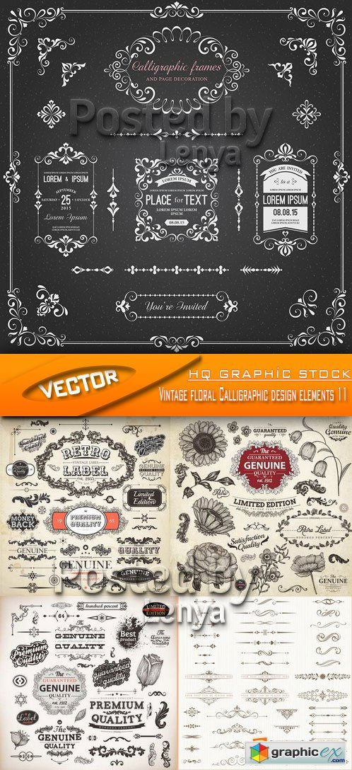 Stock Vector - Vintage floral Calligraphic design elements 11