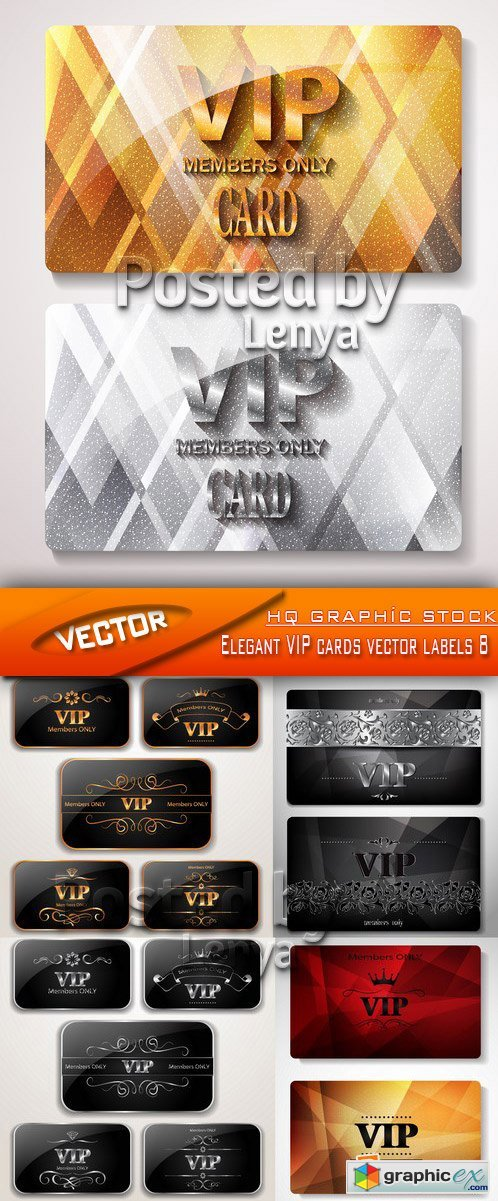 Stock Vector - Elegant VIP cards vector labels 8