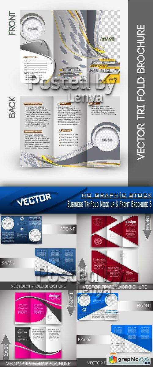 Stock Vector - Business Tri-Fold Mock up & Front Brochure 5