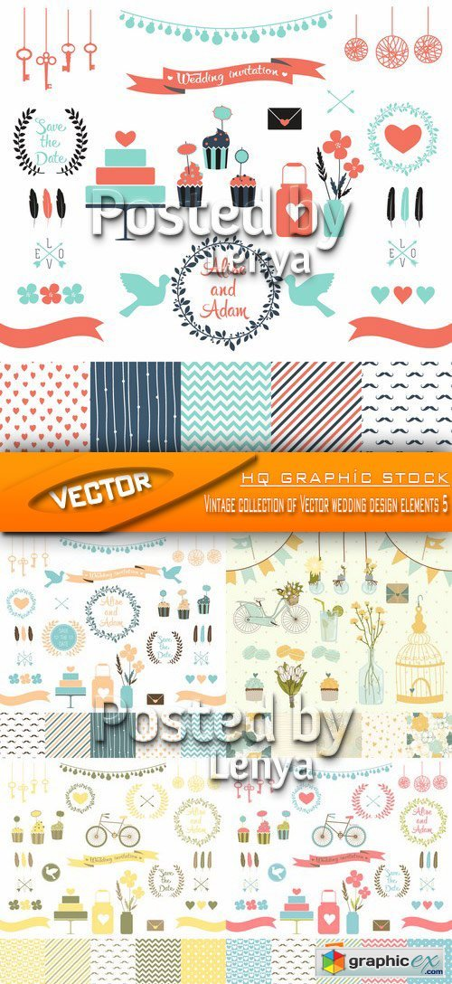 Stock Vector - Vintage collection of Vector wedding design elements 5
