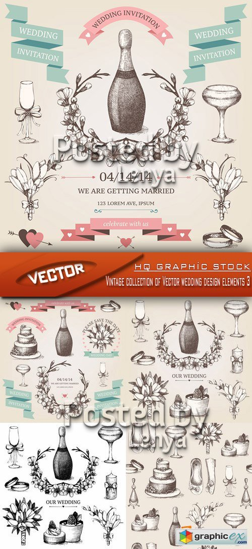 Stock Vector - Vintage collection of Vector wedding design elements 3