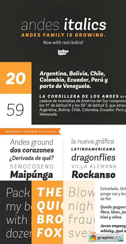 Andes Italic Font Family - 10 Fonts $290