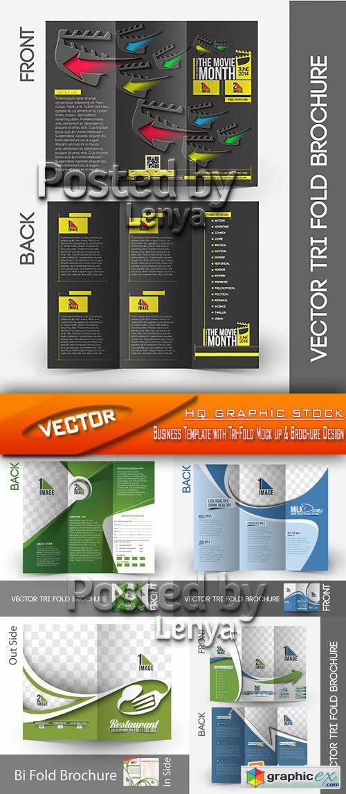 Stock Vector - Business Template with Tri-Fold Mock up & Brochure Design