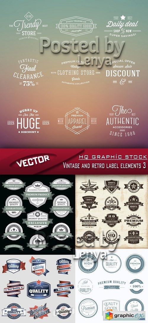 Stock Vector - Vintage and retro label elements 3