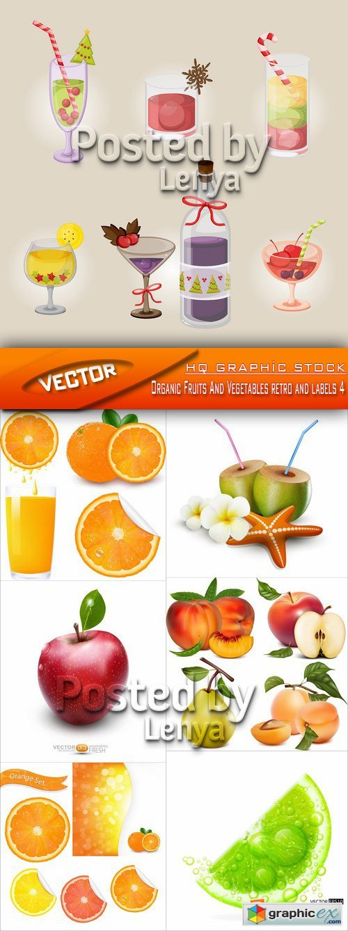 Stock Vector - Organic Fruits And Vegetables retro and labels 4
