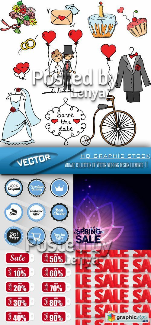 Stock Vector - Vintage collection of Vector wedding design elements 11