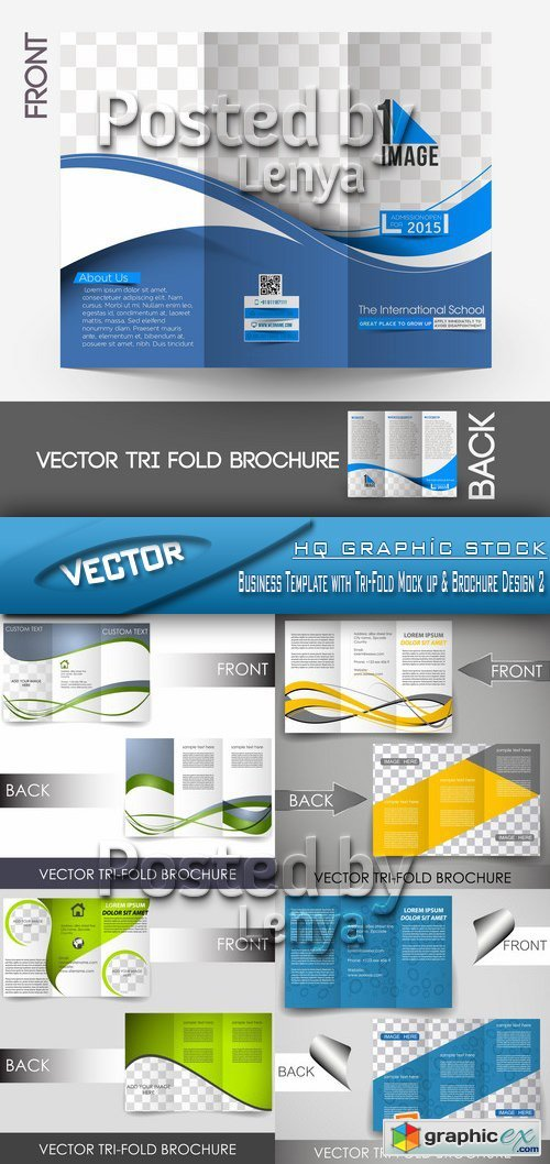 Stock Vector - Business Template with Tri-Fold Mock up & Brochure Design 2