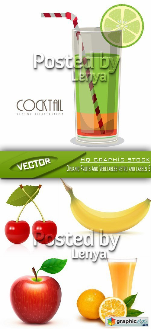Stock Vector - Organic Fruits And Vegetables retro and labels 5