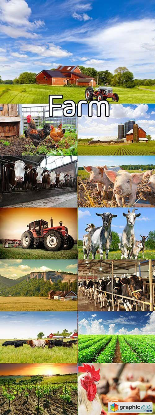 Stock Photos - Farm