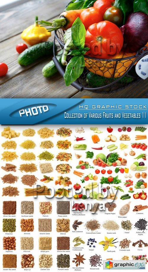 Stock Photo - Collection of Various Fruits and Vegetables 11