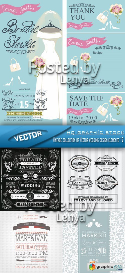 Stock Vector - Vintage collection of Vector wedding design elements 12