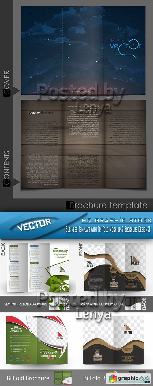 Stock Vector - Business Template with Tri-Fold Mock up & Brochure Design 3