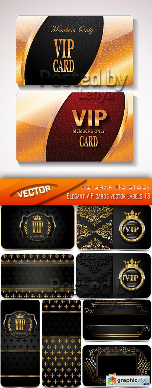 Stock Vector - Elegant VIP cards vector labels 13