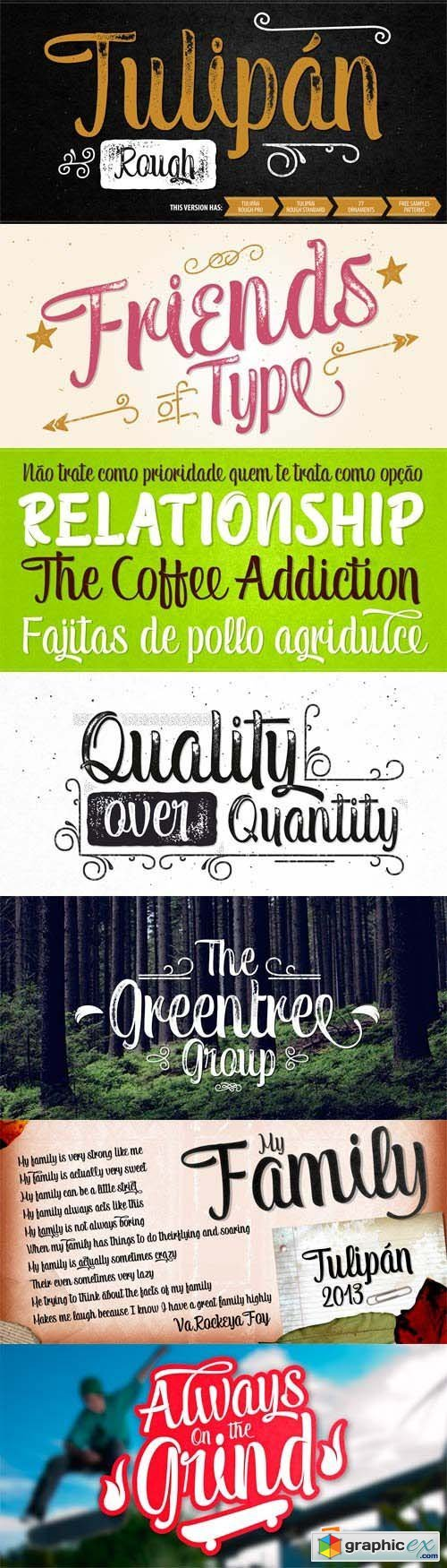 Tulipan Font Family - 11 Fonts for $80
