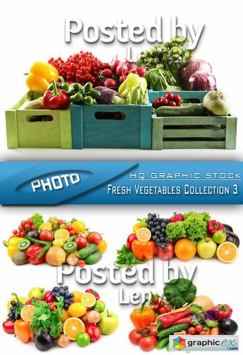 Stock Photo - Fresh Vegetables Collection 3