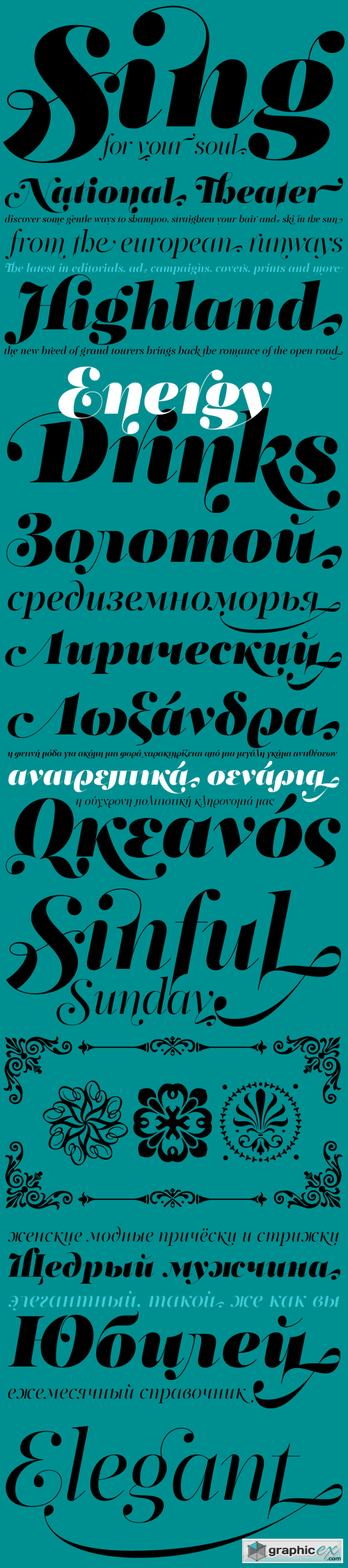 PF Regal Swash Pro Font Family - 6 Fonts for �375