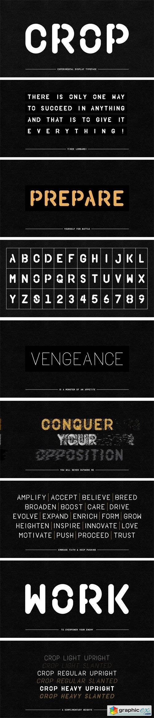 Crop Font Family - 6 Fonts for $133