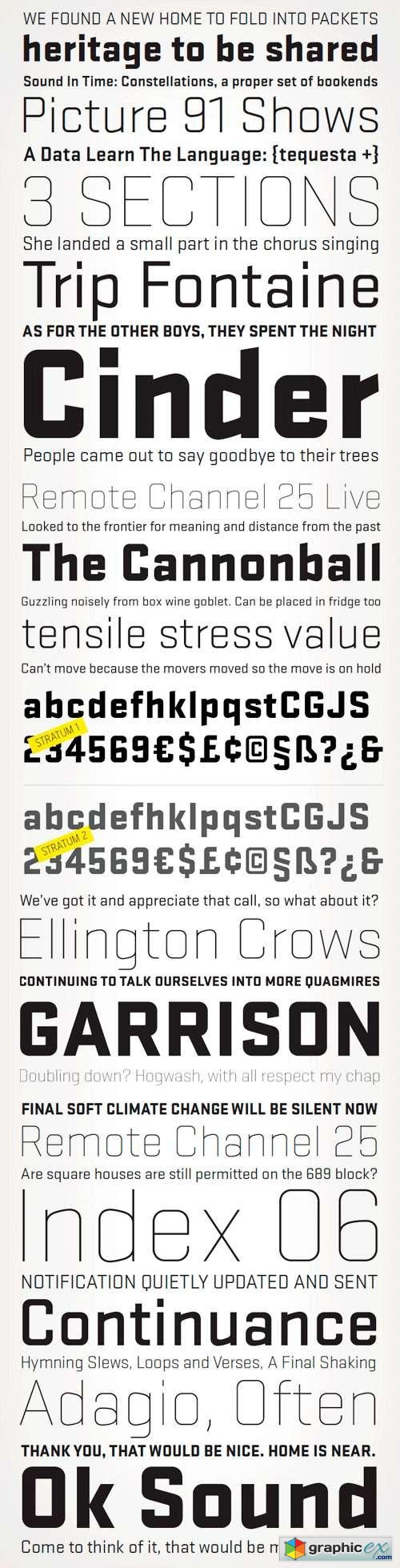 Stratum 1 & 2 Fonts Family - 12 Fonts for $179
