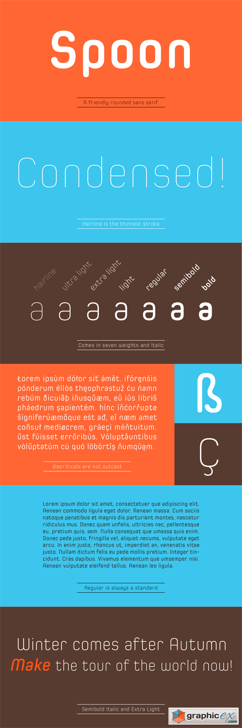 Spoon Font Family - 14 Fonts for $300