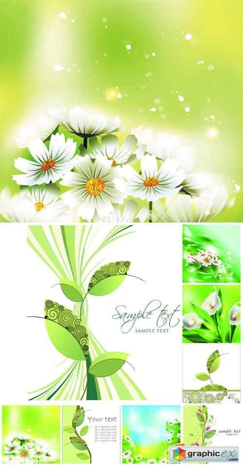 Vector natural backgrounds, flowers