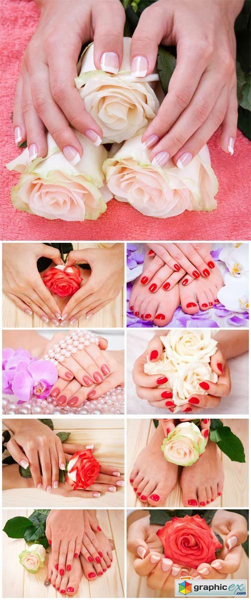 Manicures and pedicures, beautiful roses, feminine hands - Stock Photo