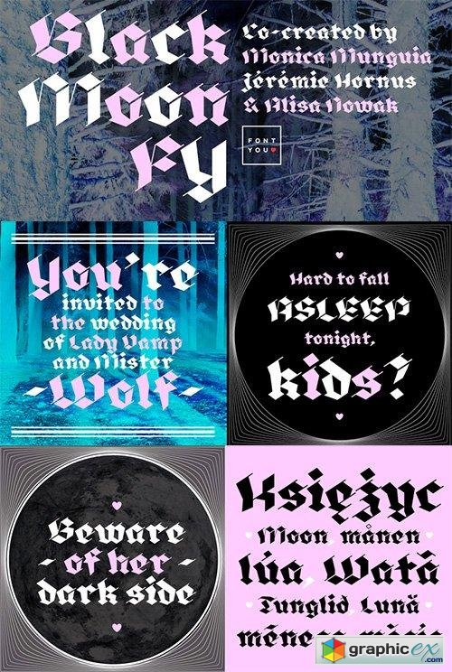 Font Bundle 6 - 6 Fonts $178