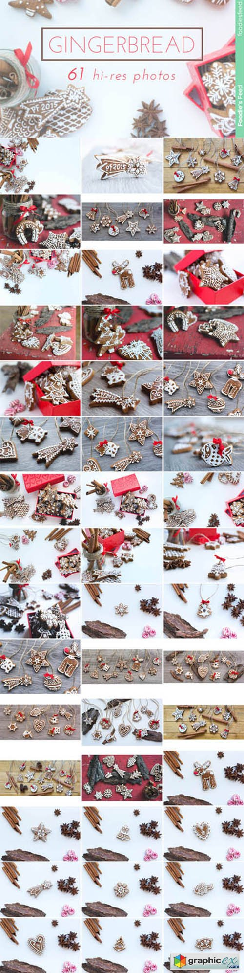 GINGERBREAD - Premium Photo Package