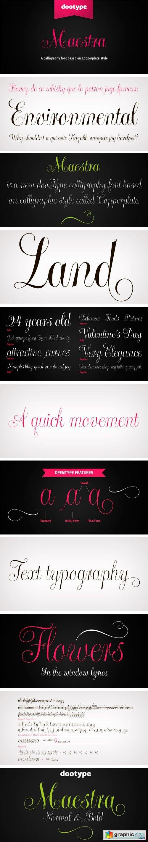 Maestra Font Family - 2 Fonts $45