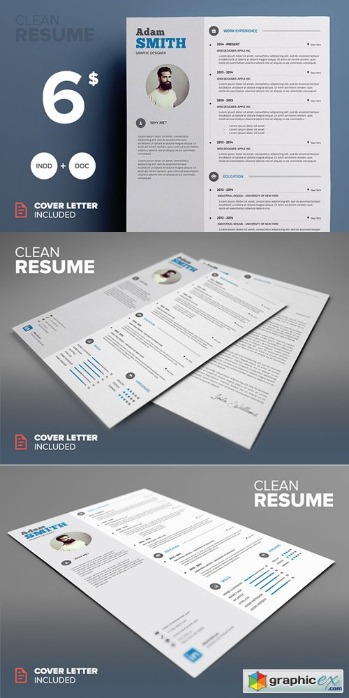 Clean Resume - MS Word & Indesign