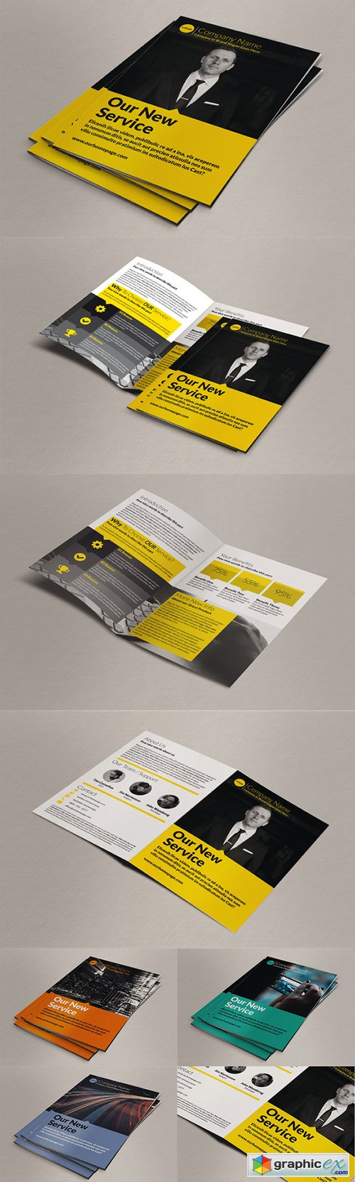 Business Bi-Fold Brochure 254895