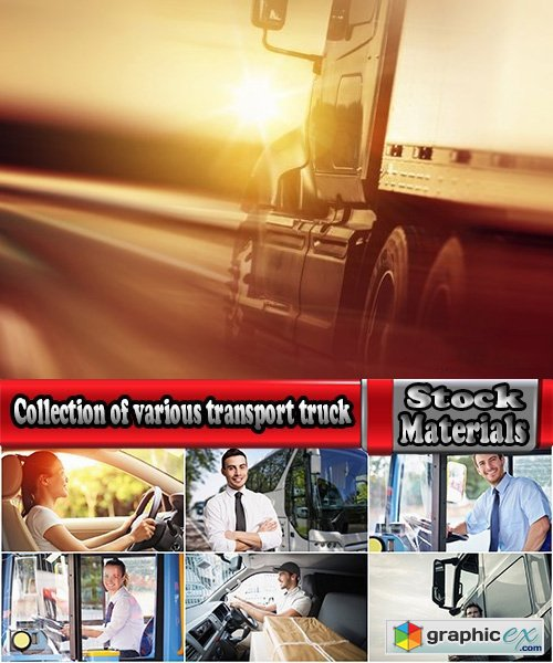 Collection of various transport truck driver of a car 25 HQ Jpeg