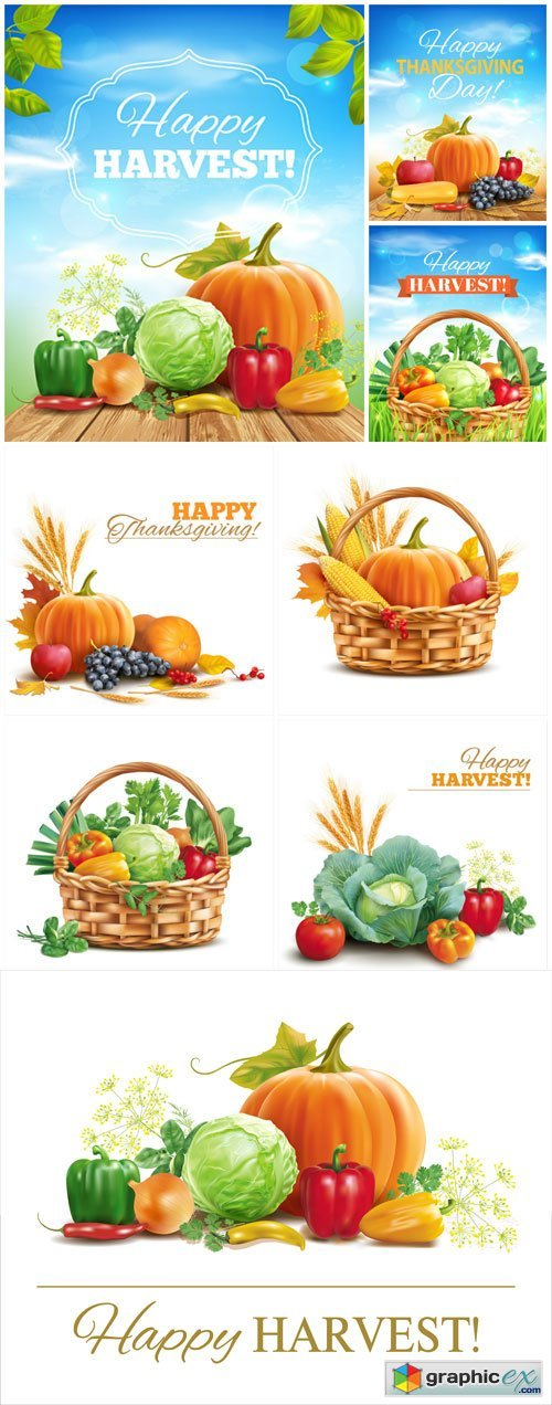 Time of harvest, vegetables vector