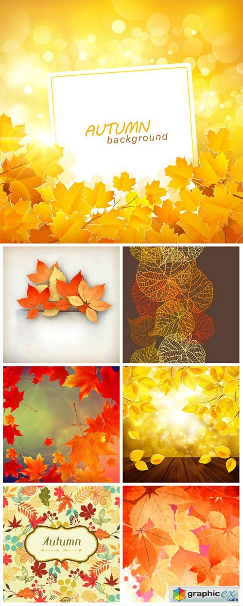 Vector autumn background with colored leaves