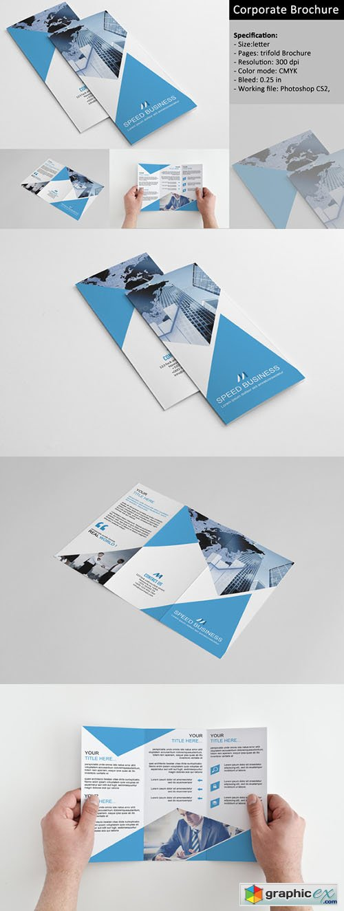 Trifold Corporate Brochure 351604