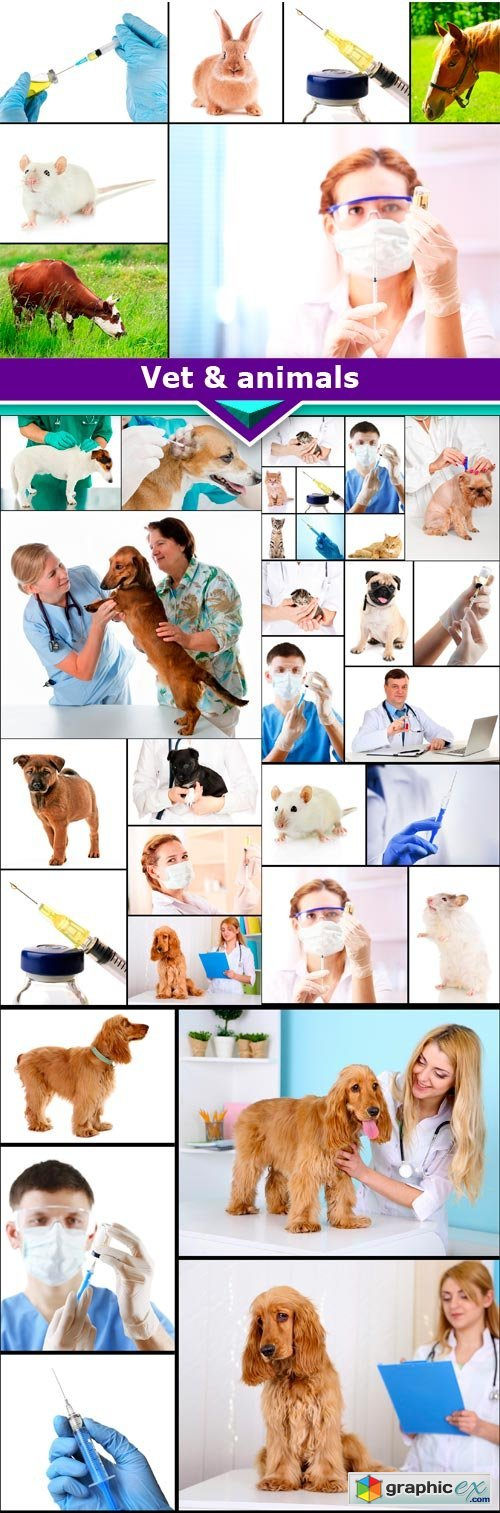 Vet & animals 10x JPEG