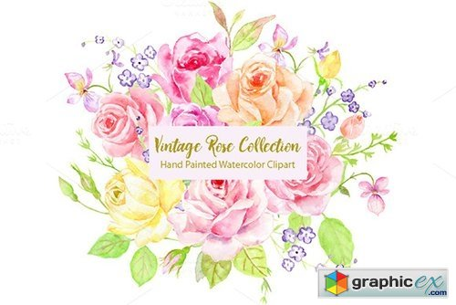 Watercolor Vintage Rose Bundle