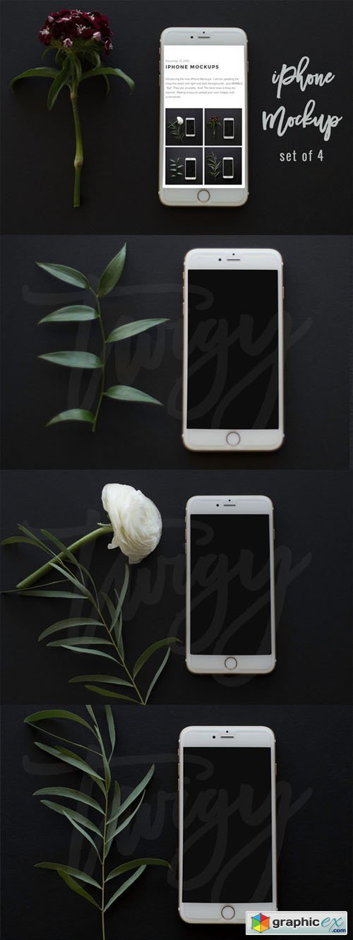 iPhone Mockup Square Format