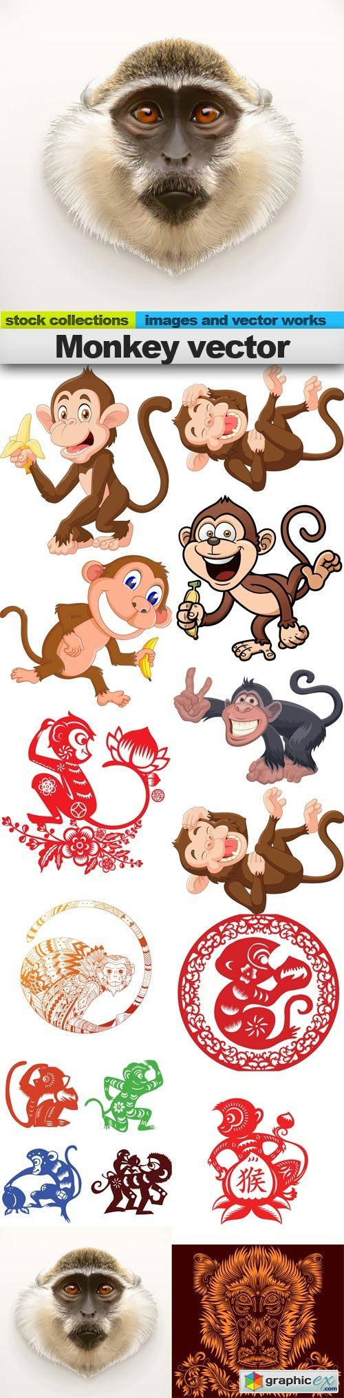 Monkey vector, 15 x EPS