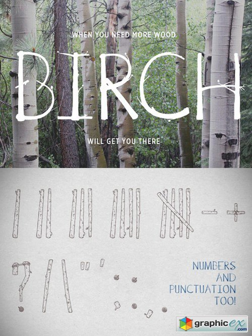 Birch Is Right Here - Fill