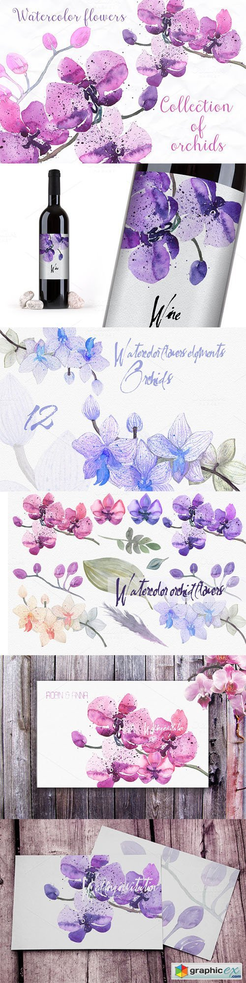 12 watercolor orchid