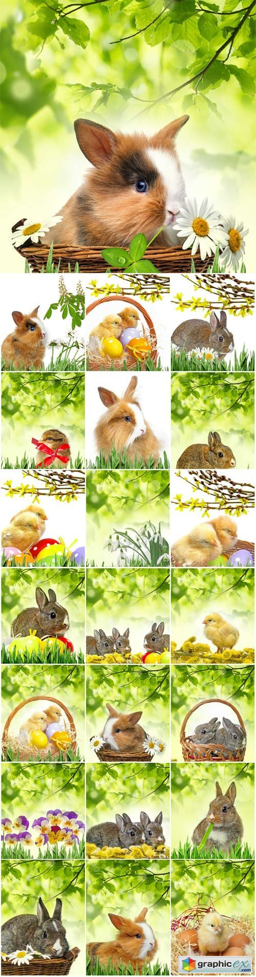 Easter bunny and chickens on a background of green leaves