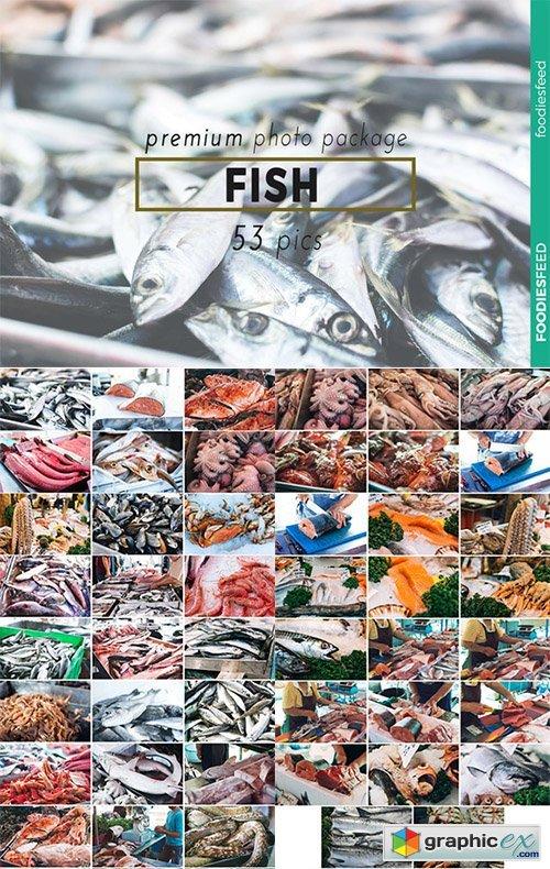 FISH - 53 Premium Photos
