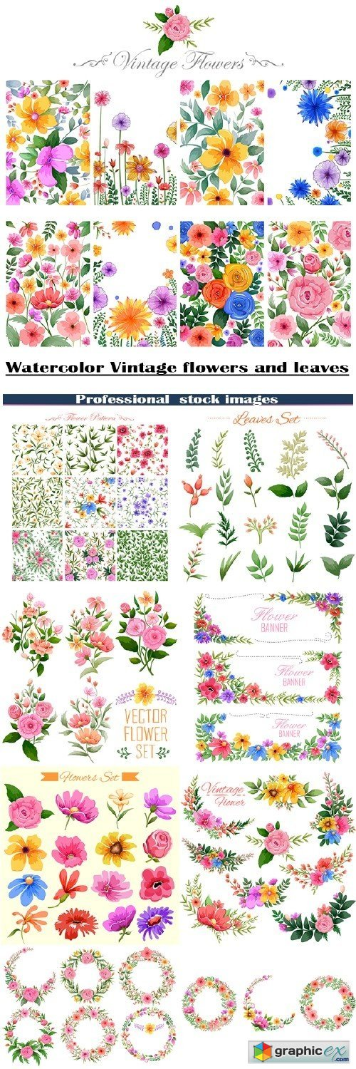 Vintage watercolor flowers and leaves