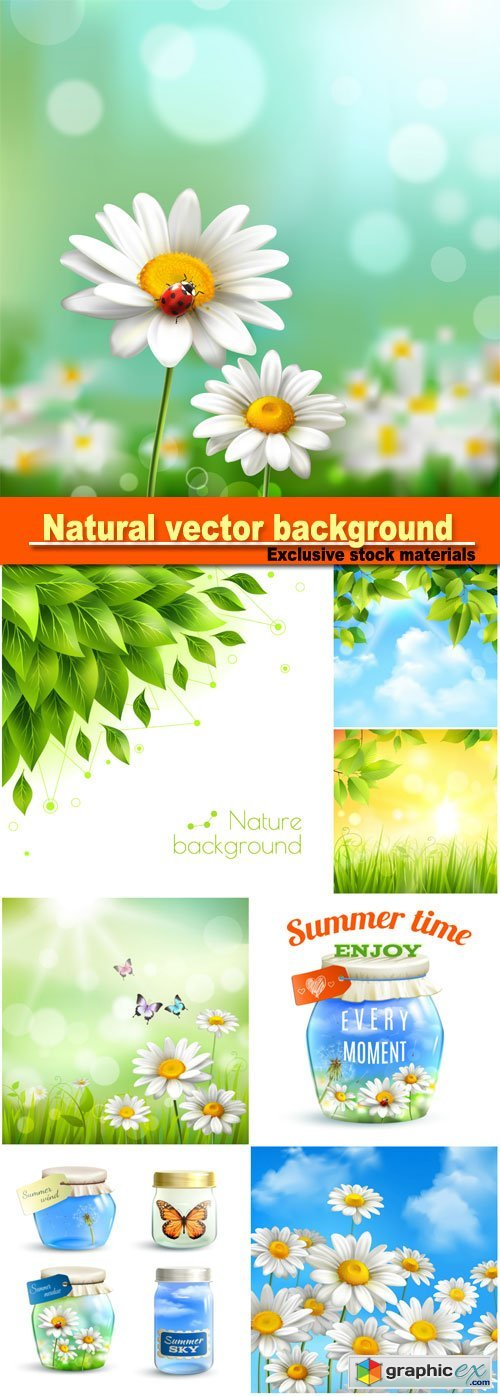 Natural vector background, flowers