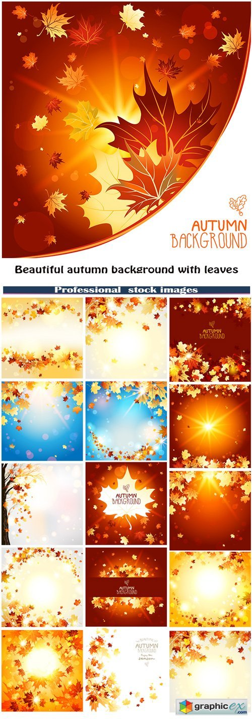 Beautiful autumn background with leaves