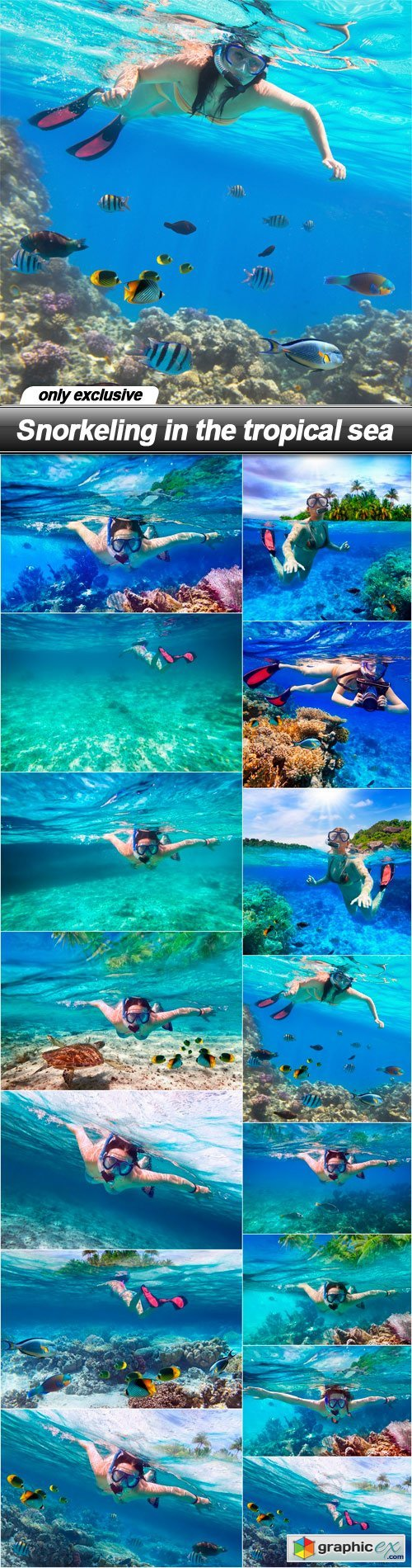 Snorkeling in the tropical sea - 15 UHQ JPEG