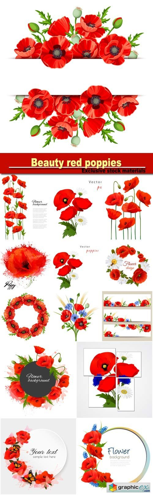 Beautiful background with beauty red poppies, vector floral frame