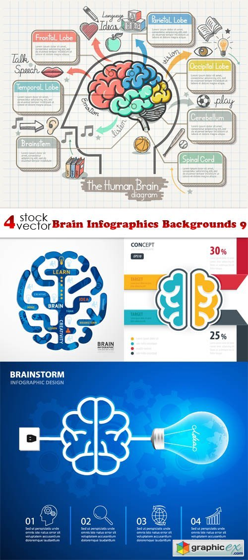 Brain Infographics Backgrounds 9