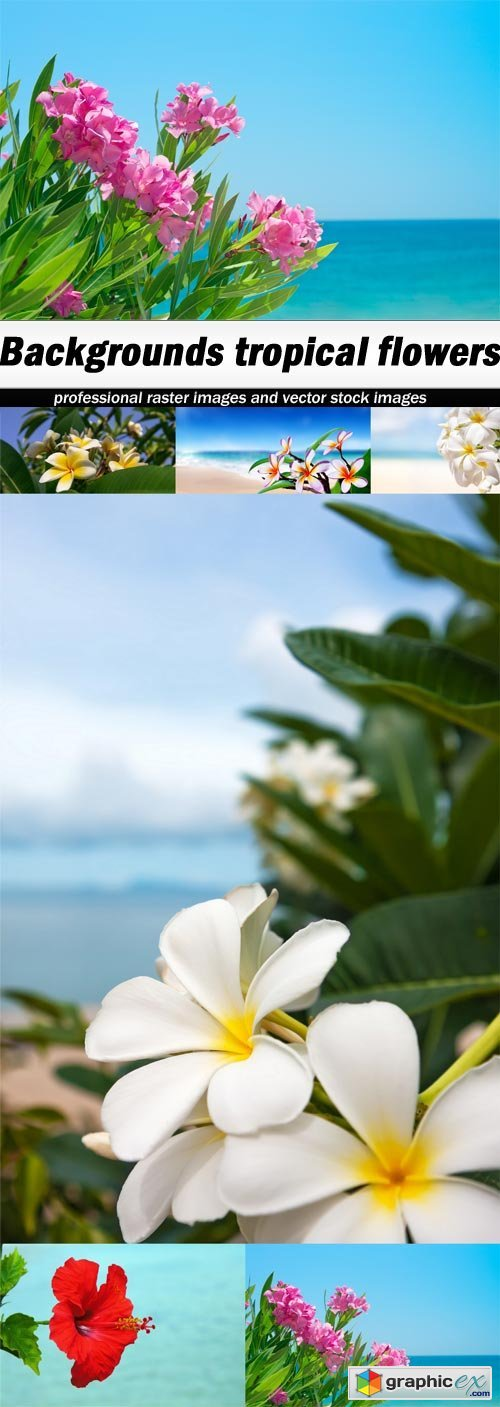 Backgrounds tropical flowers - 6 UHQ JPEG